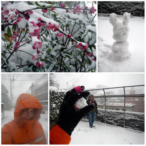 2014-02-08-snowday.jpg