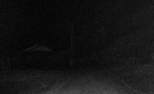 dark-walk.jpg