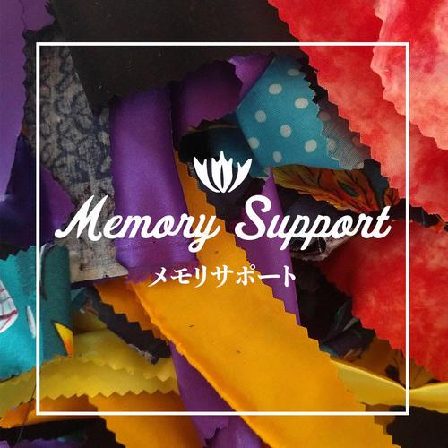 http://www.mediatinker.com/blog/assets_c/2018/03/memory-support-thumb-500xauto-799.jpg