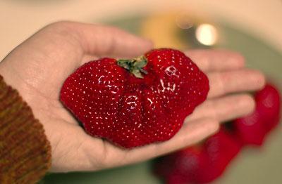bigberries2.jpg