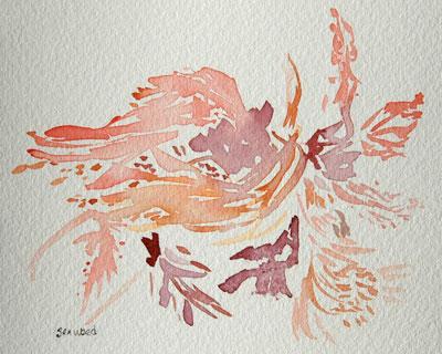 oz-el-seaweed-sketch.jpg