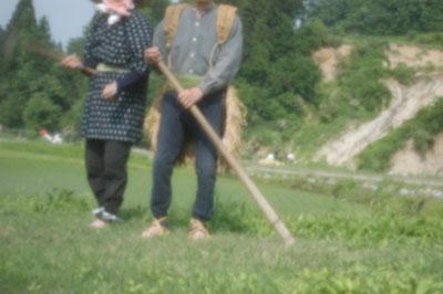 ricefarmers.jpg