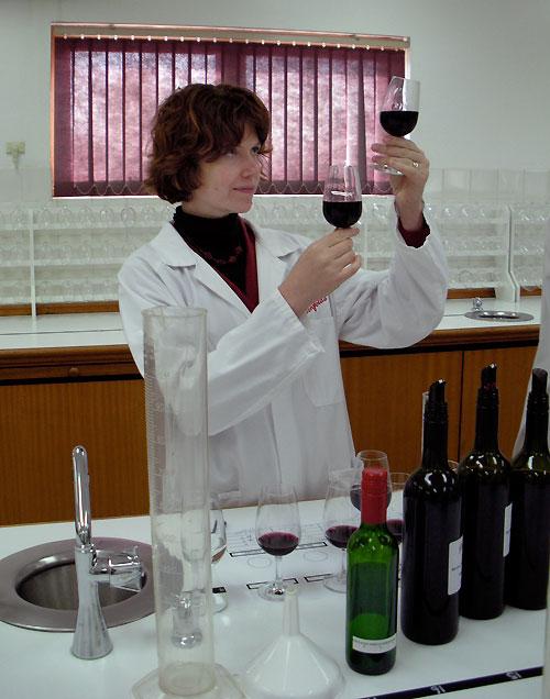 wineviewing.jpg
